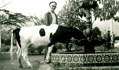 Fernando González y su vaca Paturra