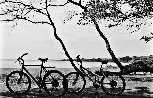 Fotografía por Eduardo del Corral