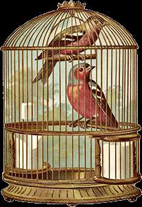 Ilustración de una jaula con dos pájaros