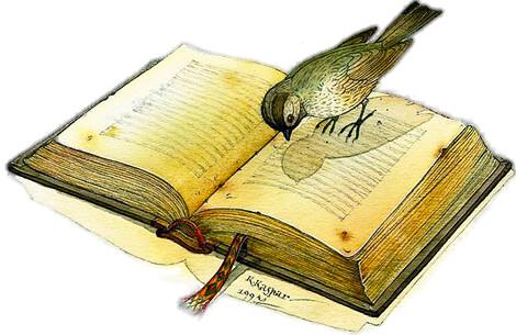 """Bird and Book"" / Ilustración © Kestutis Kasparavicius"