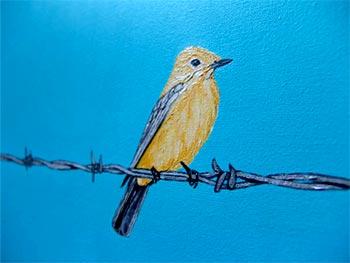 """""""Bajo el cielo azul"""" de Ethel Gilmour"""