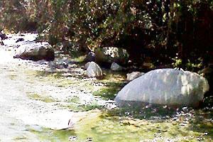 Guatapurí, río de agua fría - La leyenda (documental) - Silvana Tobón Cardona / Alejandro Polling Barreneche / Giovanny Rendón Castañeda