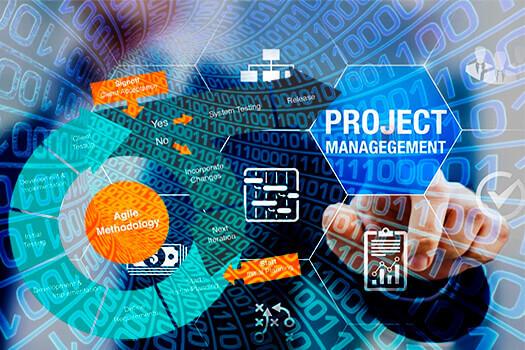 IT-Project Management