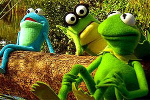 Los años pantanosos de Kermit (la Rana René) - David Gumpel