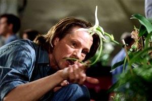 El ladrón de orquídeas - Spike Jonze