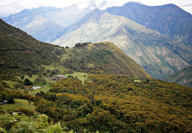 La imagen corresponde a la lagunilla de la que hablan los conquistadores, actualmente en la finca La Ciénaga, vereda de Santa Águeda, Municipio de Peque, Antioquia. Foto por Ubeimar Arango.