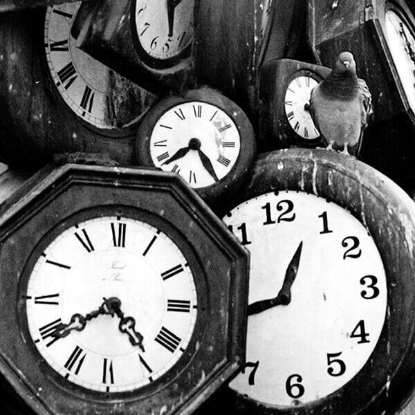 Fotografía de paloma y relojes por Marta Eloy Cichocka