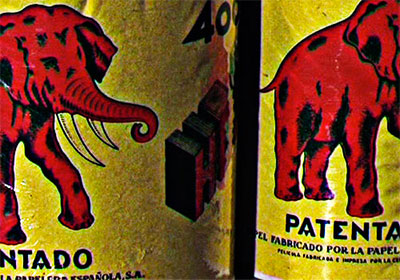 La memoria del elefante - Manel Dalmau