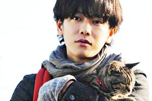 Si los gatos desaparecieran de la Tierra - Akira Nagai