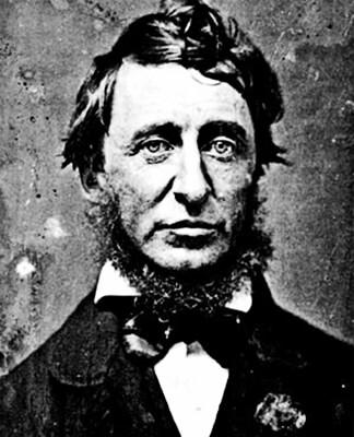 Henry David Thoreau - Wikimedia.org