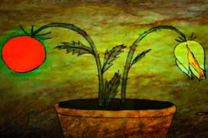 Tomato Story - Tatiana Poliektova / Olga Poliektova