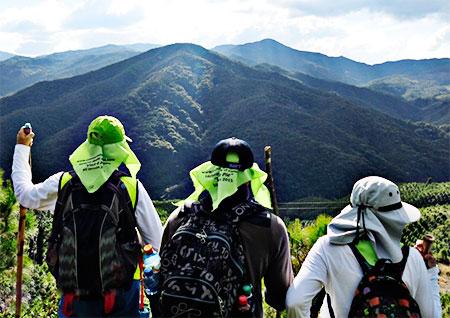 """Proyecto """"Lectura del Viaje a pie desde el camino"""""""