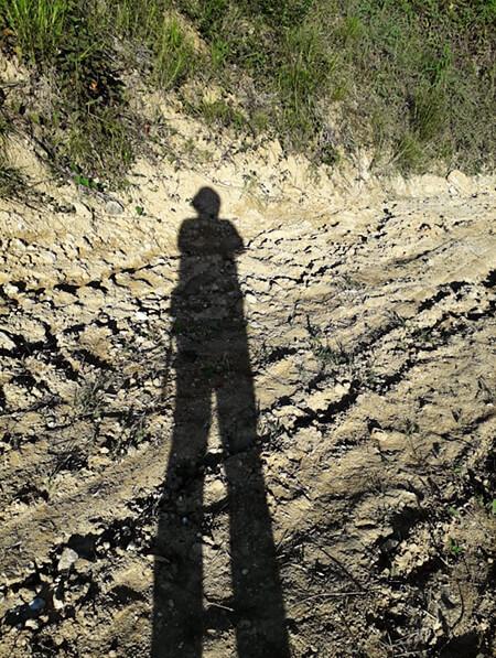 Proyecto «Lectura del Viaje a pie desde el camino»