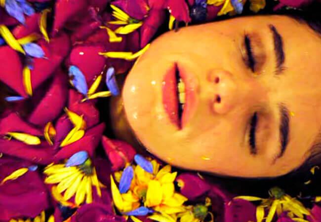 Violeta de mil colores - Harold Trompetero